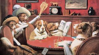 dogs sittingupwithasickfriend