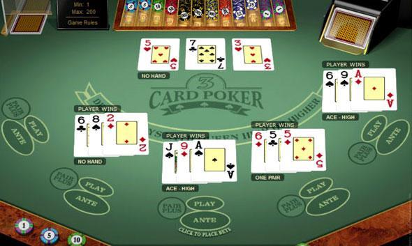 Casino kennels