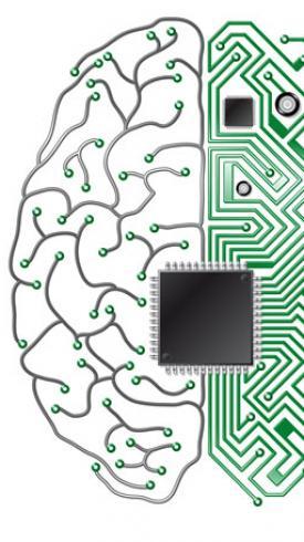 cervello computer