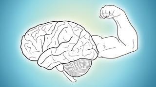 esercizio cervello